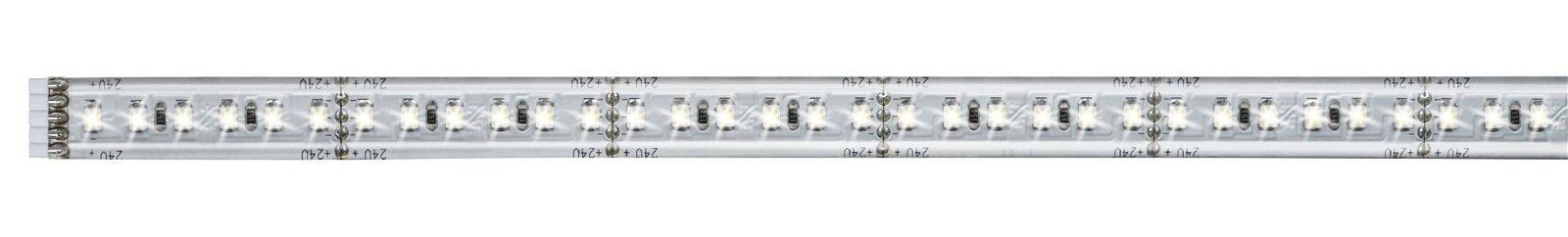 MaxLED 1000 LED Strip Daglichtwit 0,5m gecoat 6W 1100lm/m 6500K