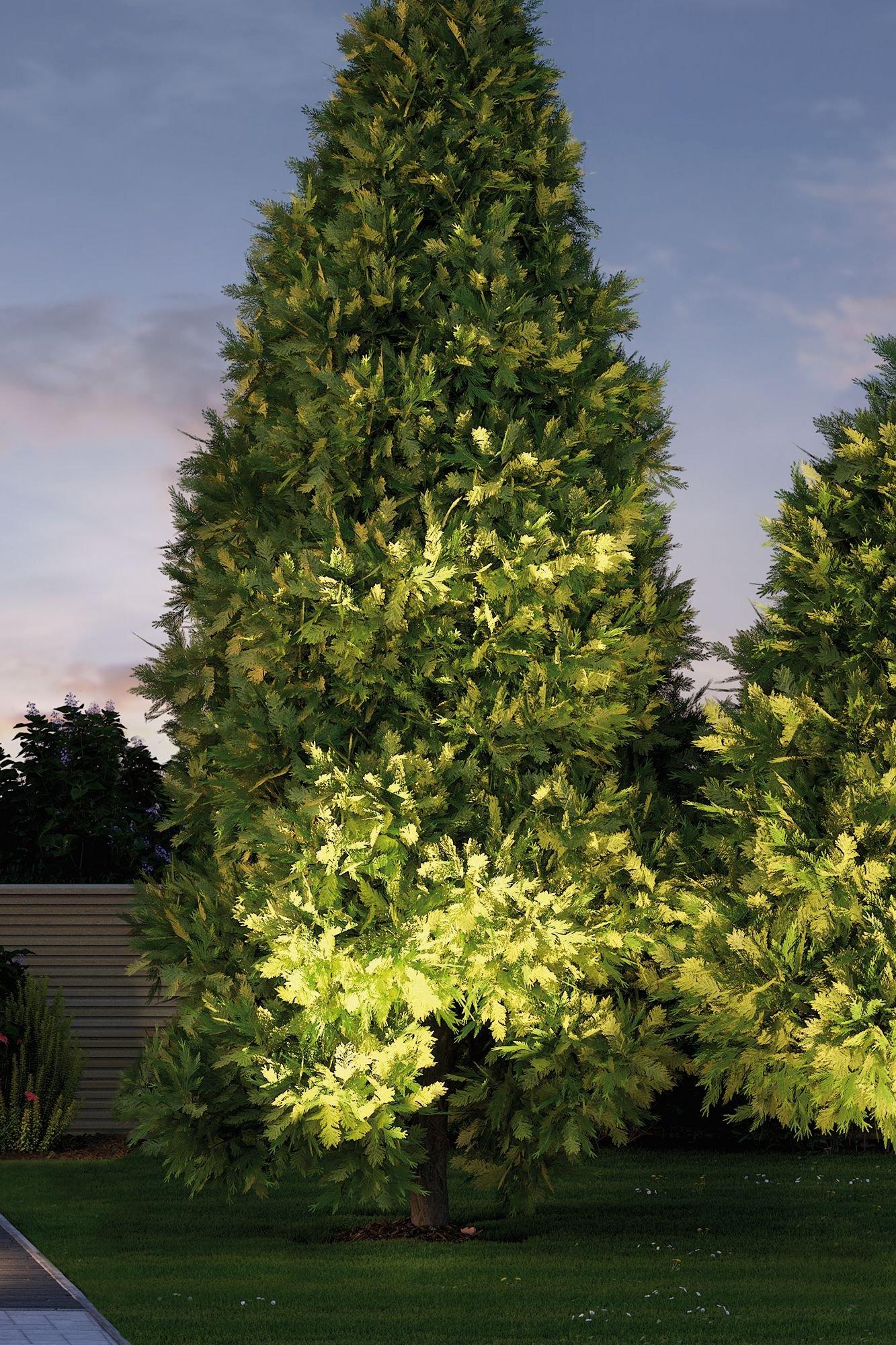 Plug & Shine LED Gartenstrahler Cone 20° IP67 3000K 6,8W Silber/Anthrazit