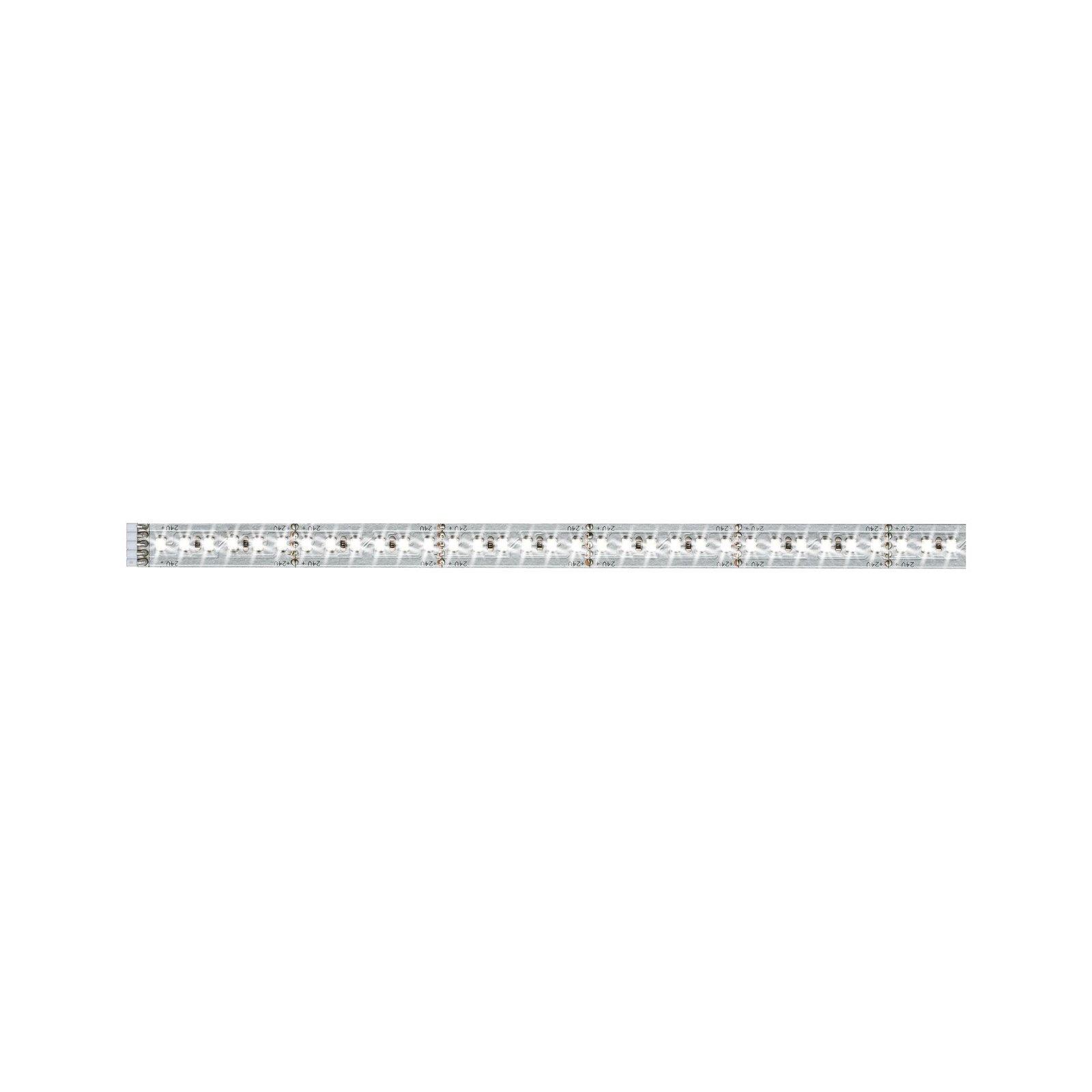 MaxLED 1000 LED Strip Daglichtwit 1m 11,5W 1100lm/m 6500K