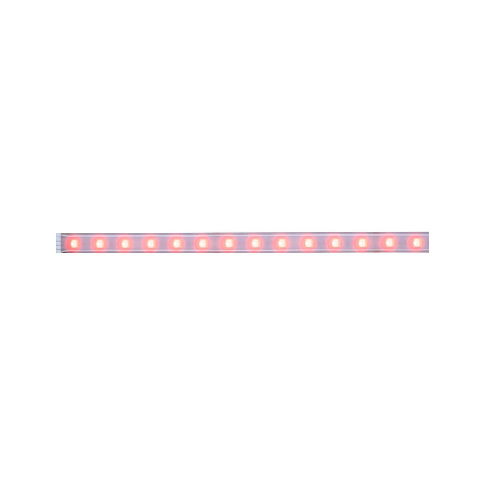 MaxLED 500 Strip LED RGBW 1m recouvert 12W 500lm RGBW